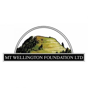 mt-wellington-foundation
